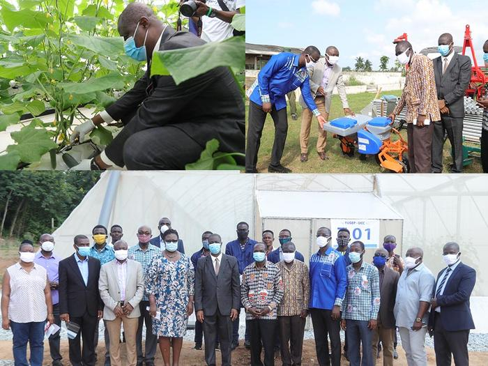 Harvesting of First Fruit and donation